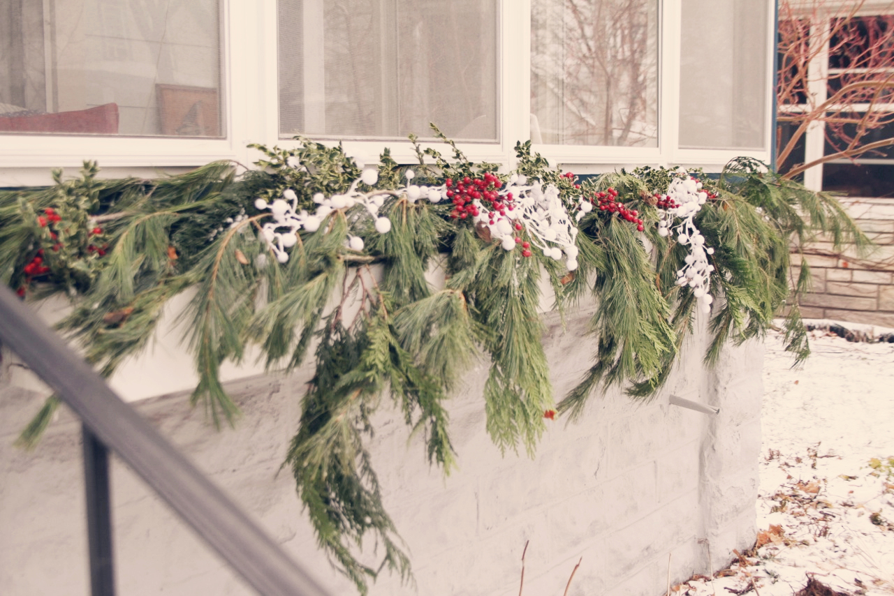 Holiday Window Boxes