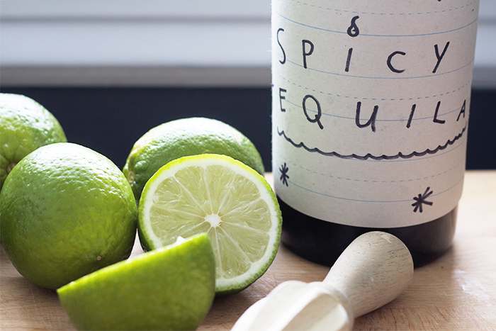 Spicy Tequila Mule Recipe