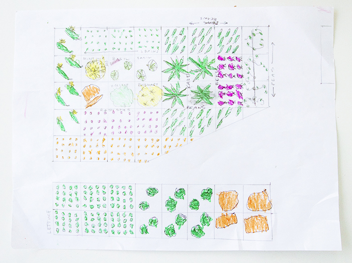 Planning our Raised Bed Garden