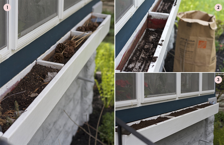 how to plant a window box how to plant window box container gardens gardening basics planting deuce cities henhouse