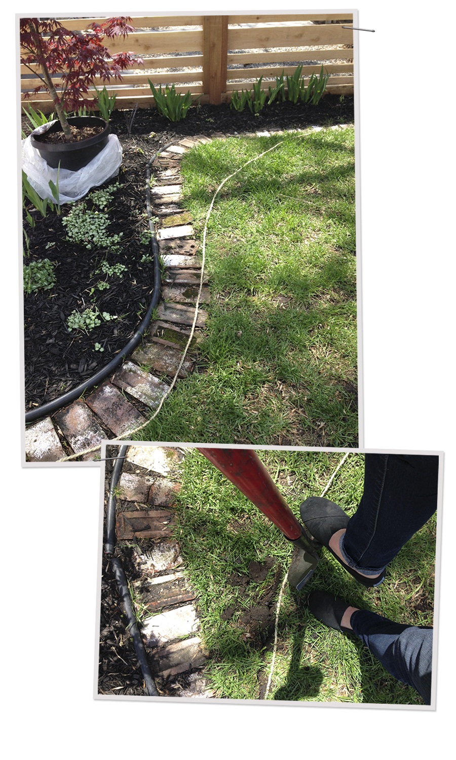 Adjusting the Border on the Flower Bed