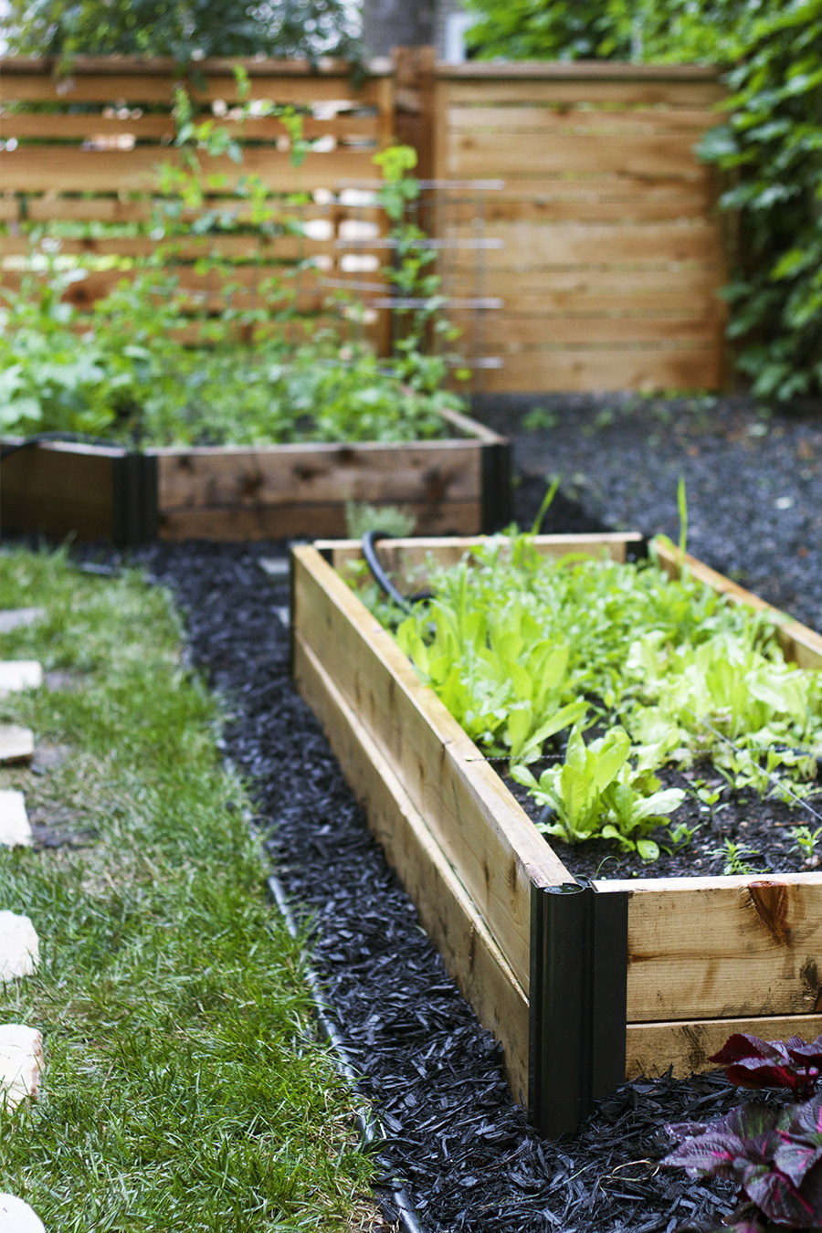 Raised Bed Side Garden