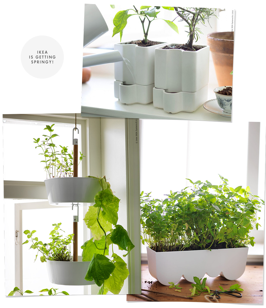 New Line of Planters at Ikea : Spring 2015