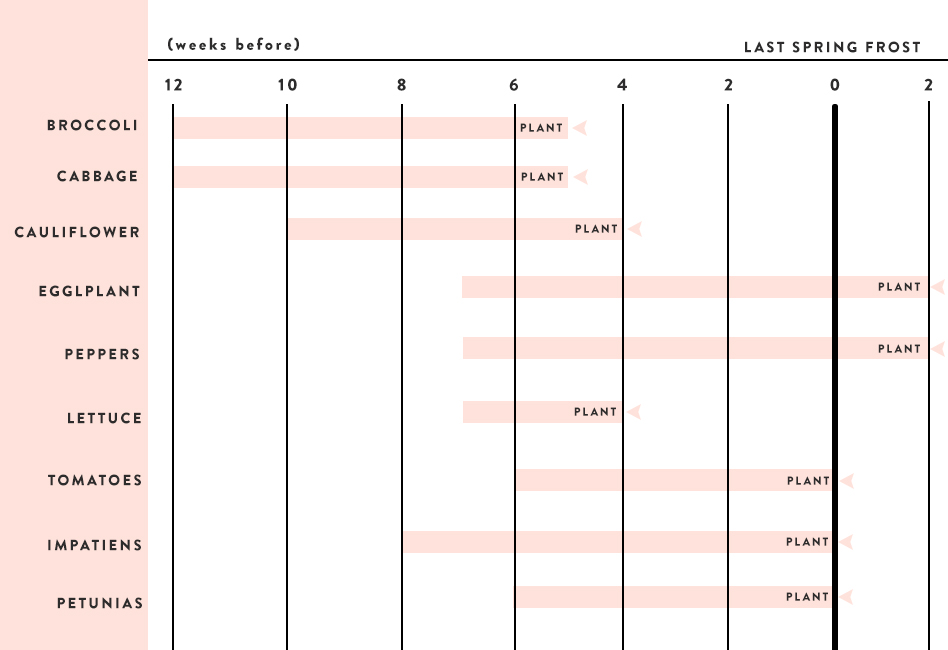 Schedule for Sowing Seeds