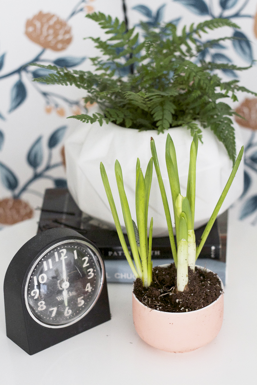 Add Spring to your home using grocery store bulb gardens and pretty little vessels