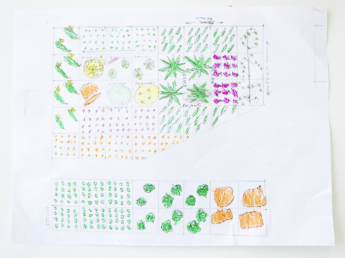 Involving Kids in Vegetable Garden Planning