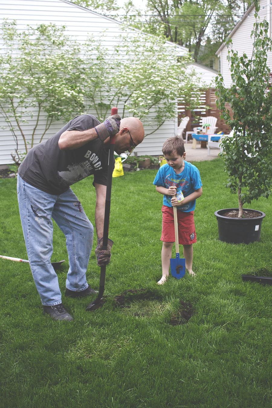 How to Plant a Tree | Deuce Cities HenHouse