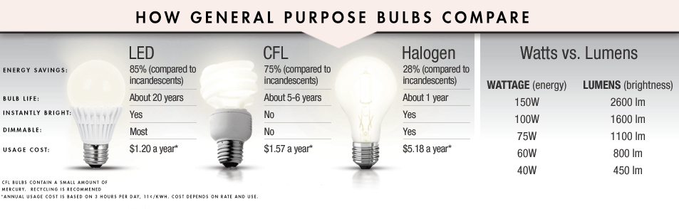 LED Lighting Infographic