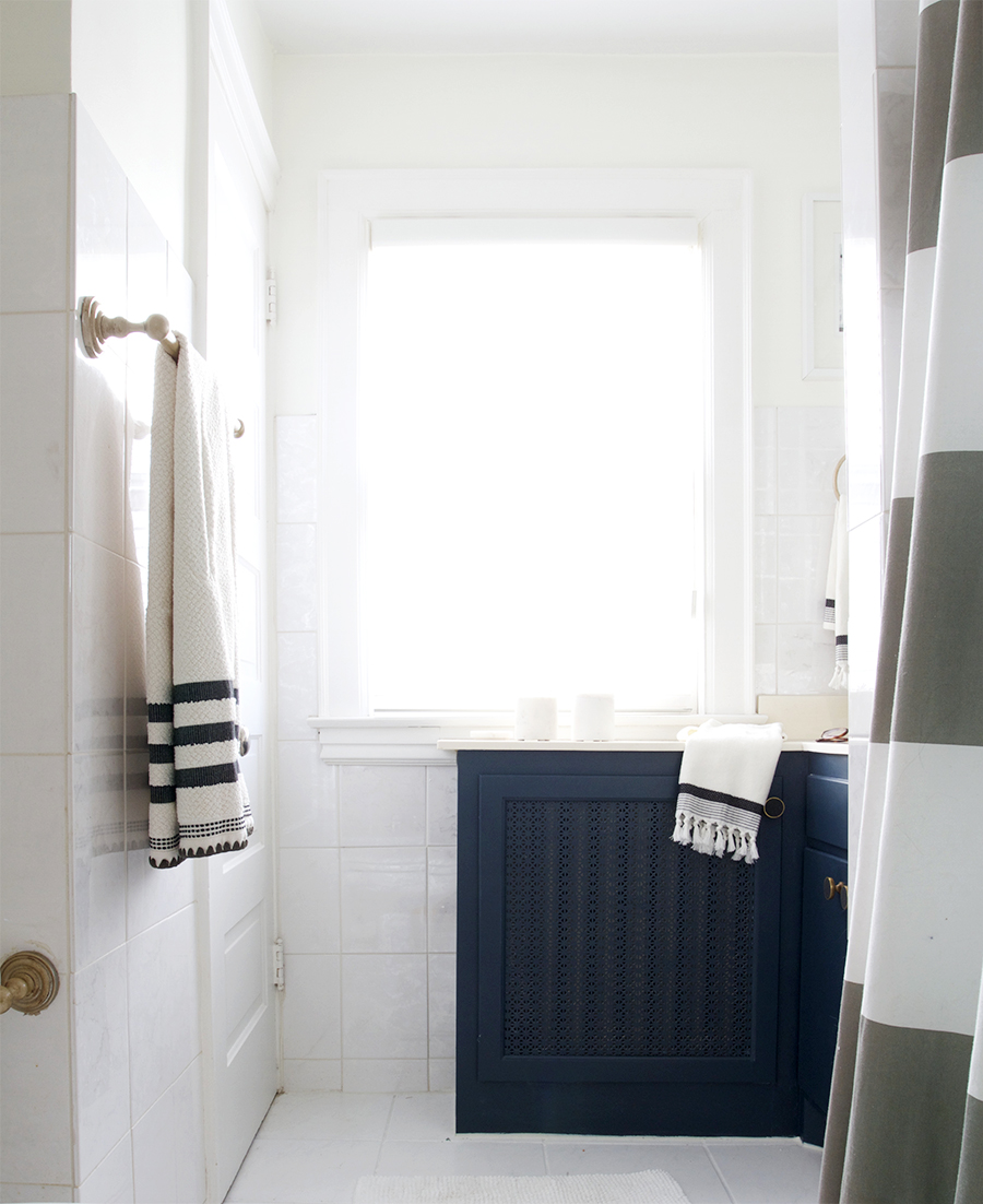 Navy and White Bathroom with Brass Fixtures