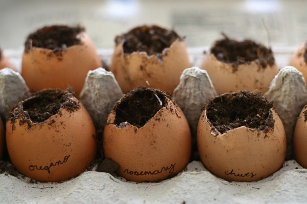 Eggs: Not just for Eatin'.