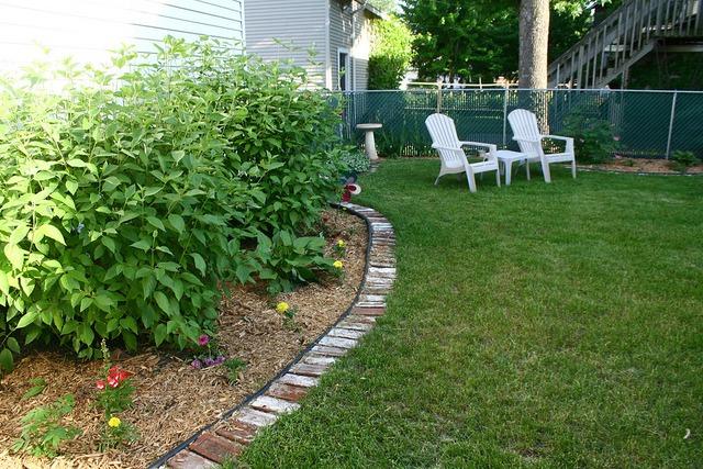 My Yard: Year 2