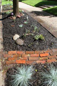 Boulevard Garden : Part 2