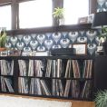Record Collecting and Expedit Shelv...