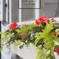 Gardening Basics : Planting a Windo...