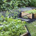Gardening Basics : Installing a Gar...