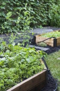 Installing a Garden Bed