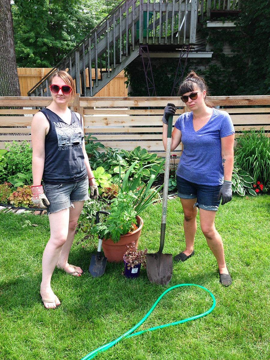 Gardening Basics : Dividing Perennials