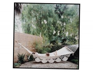 Time for a Hammock?