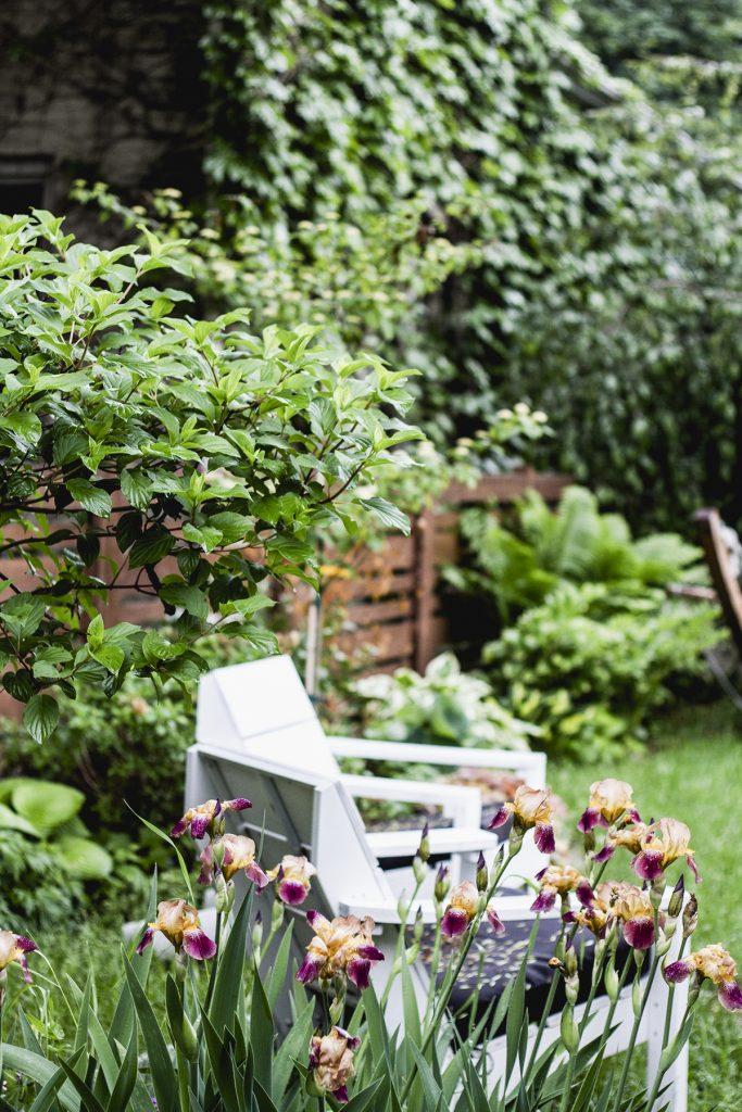 My May Garden