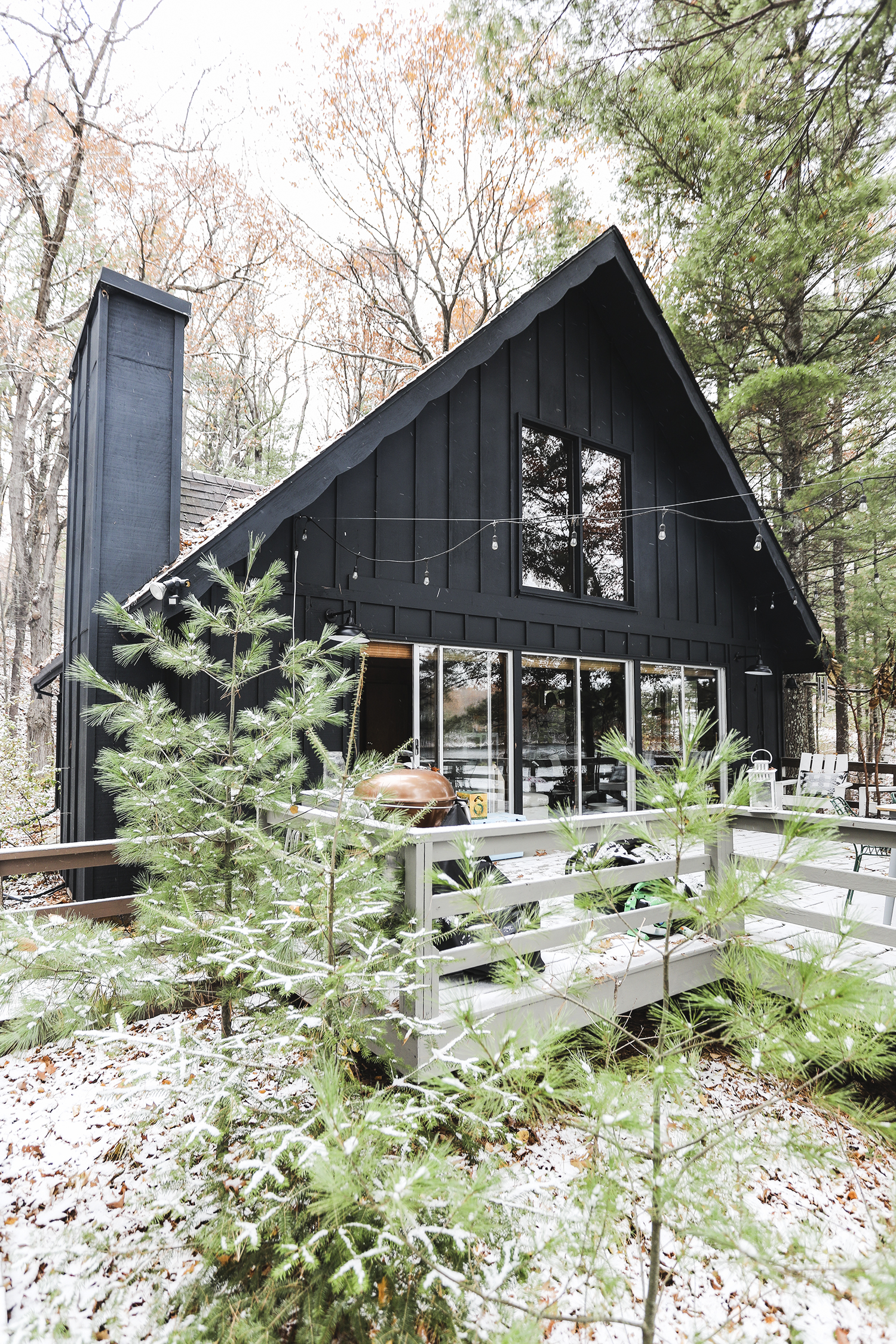 Wisconsin Chalet Cabin Painted Black